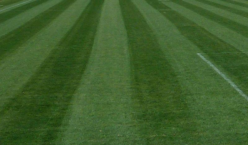 La tonte sur les terrains de sport coseec france sas for Tarif de tonte de pelouse