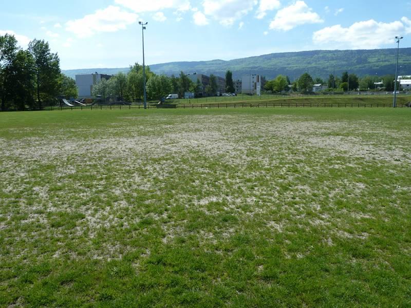 terrain dénudé, terrain de football usé, dégarni