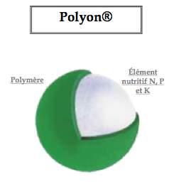 engrais coseec eurogreen polyon